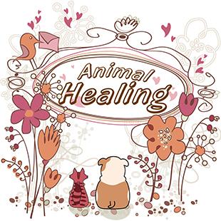 Animal-Healing310